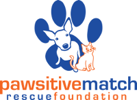Pawsitive Match Rescue Foundation Logo